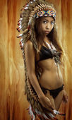 Native american, Indians in traditional dress, standing in profile, American indian Girl, background made of wood — Foto de Stock