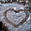 Heart on a frozen cut of of wood — Stock Photo #22439693