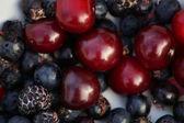 Berries — Stock Photo