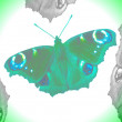 Royalty-Free Stock Photo: Butterflies abstract