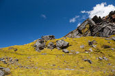Rocks of Langtang — Stock Photo