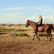 Blonde girl riding bay horse bareback — Stock Photo