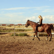 Stock Photo: Blonde girl riding bay horse bareback