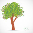 Tree isolated on white. — Stock Vector