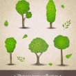 Hand drawn trees. — Stock Vector