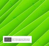 Abstrakt grün hintergrund vektor — Stockvektor