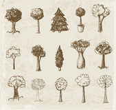 Sketch trees collection. — Stock Vector