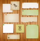 Set of vintage paper objects with bugs — Vector de stock