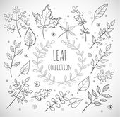Leaves collection — Stock Vector