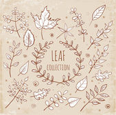 Sketch leaf collection — Vector de stock