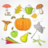 Set of autumn objects. — Stock Vector