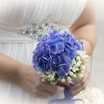 Wedding union — Stock Photo #31812491