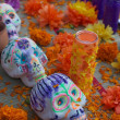 Day of the dead skulls — Stock Photo