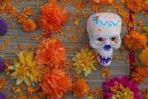 Day of the dead skull and flowers — Stock Photo
