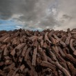 Stock Photo: Pile of bog peat drying
