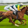 Stock Photo: Horse racing motion blur