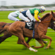 Horse racing motion blur — Stock Photo