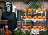 Skeleton and halloween pumpkins — Foto Stock