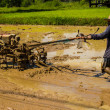 Farmer plowing in asia. — Stock Photo