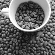 Monochrome Coffee — Stock Photo