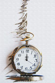 Time is flying — Stock Photo