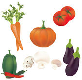 3D Set of Vector Vegetables. Illustration Collection — Stock Vector