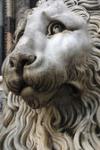 Genoa Cathedral Lion — Stock Photo