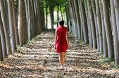 Mulheres vestidas de vermelho, andando na floresta — Foto Stock