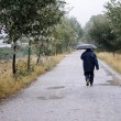 Stock Photo: Unknown man walking along a road in the woods, on a rainy day, w
