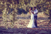 Just married couple in nature background — Stock Photo