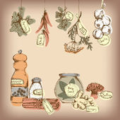 Set of spices and herbs. — Stock Vector