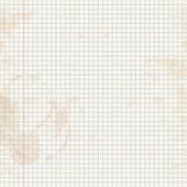 Skrivbok i en bur — Stockvektor