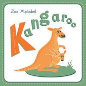Letter K - Kangaroo — Stock Vector