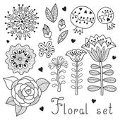 Set of floral elements isolated for your design. — Stock Vector
