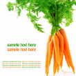 Fresh carrot fruits with green leaves, isolated on white background — Stock Photo