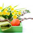 Stock Photo: Easter egg with serviette, in tray for breakfast. isolated on white background.