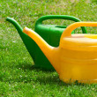 Two watering cans on a green fie - Stock Photo