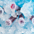 Stock Photo: Reaction plastic tube in box full of ice