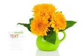 Beautiful sunflower bouquet in green jug, on white background — Stock Photo