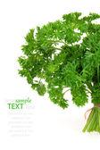 Fresh green parsley, isolated on white background — Stock Photo