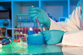 Researcher loads DNA samples for PCR analysis — Stock Photo