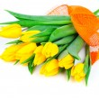 Yellow tulip flowers bouquet isolated on white background — Stock Photo