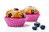 Blueberry muffins on white background — Stock Photo