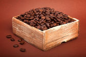 Coffee beans in the wooden box — Stock Photo
