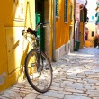Street in the small town Rovinj, Croatia — Stock Photo #22079555