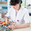 Girl debugging an electronic precision device - Stock Photo