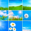 Assortment of spring and summer landscape - Stock Photo