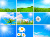 Assortment of spring and summer landscape — Stock Photo