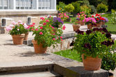 Landscaped flower garden — Stock Photo