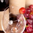 Macro shot of one red grapes berry in glass. on wine bottle back — Stock Photo #22837604